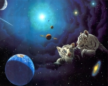 william-schimmel-tiger-cubs-and-space-1