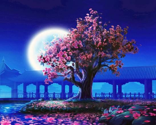 Лунный календарь для женщин