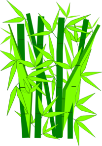 clipbamboo-green-md